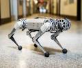 """MIT全新跑酷机器人:神似站立""""机器狗"""",会耍杂技"""